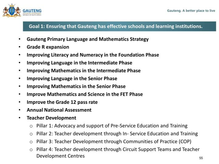 Goal 1: Ensuring that Gauteng has effective schools and learning institutions.