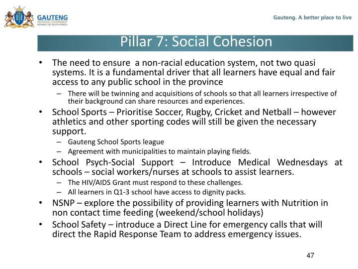 Pillar 7: Social Cohesion