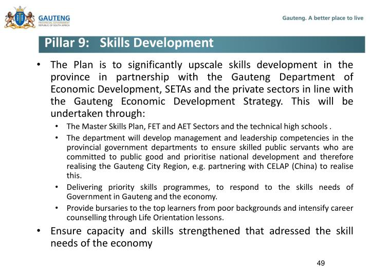 Pillar 9:Skills Development