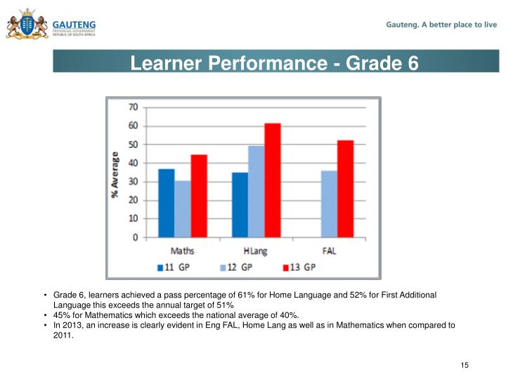 Learner Performance - Grade 6