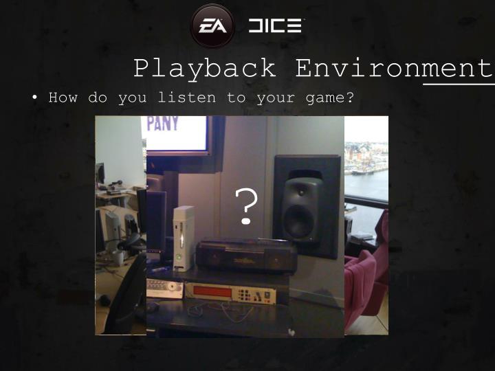 Playback Environment