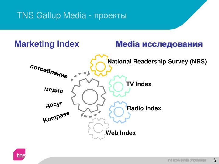 TNS Gallup Media -