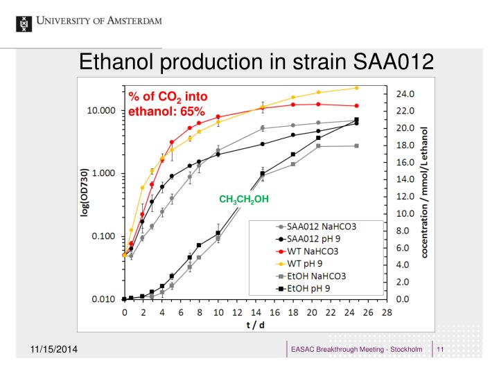 Ethanol production in strain SAA012