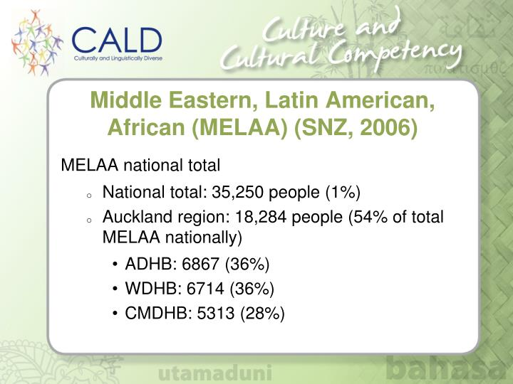 Middle Eastern, Latin American, African (MELAA) (SNZ, 2006)