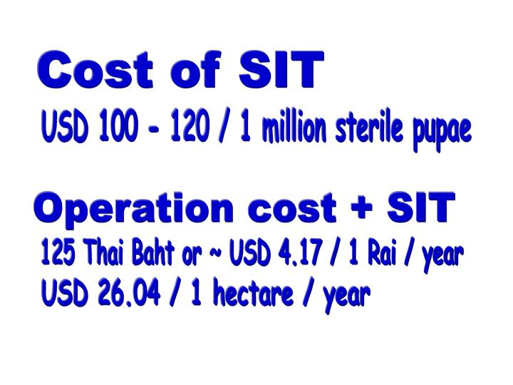Cost of SIT