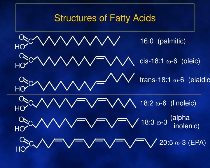 Structures of Fatty Acids