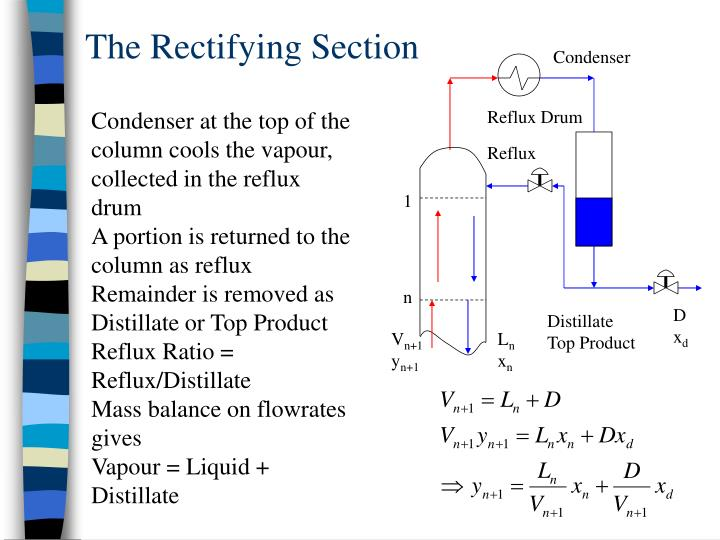 The Rectifying Section