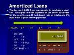 amortized loans1