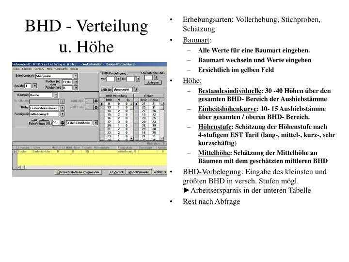 BHD - Verteilung u. Höhe