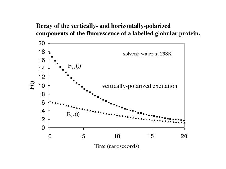 Decay of the vertically- and horizontally-polarized  components of the fluorescence of a labelled globular protein.