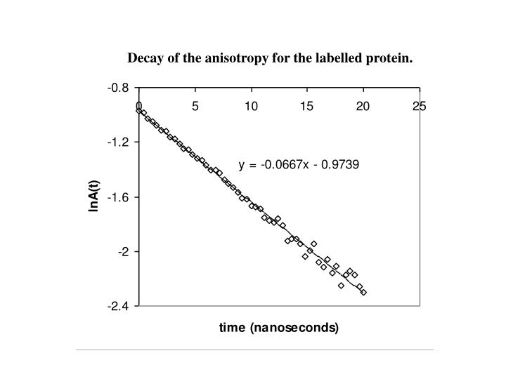 Decay of the anisotropy for the labelled protein.
