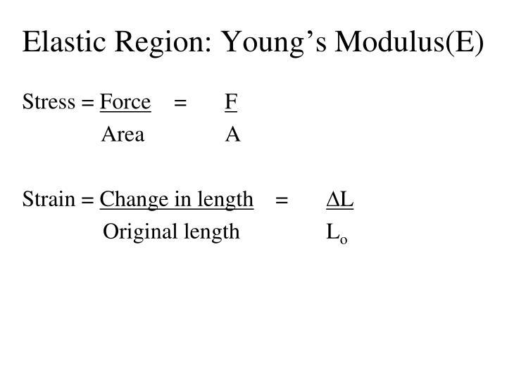 Elastic Region: Young's Modulus(E)