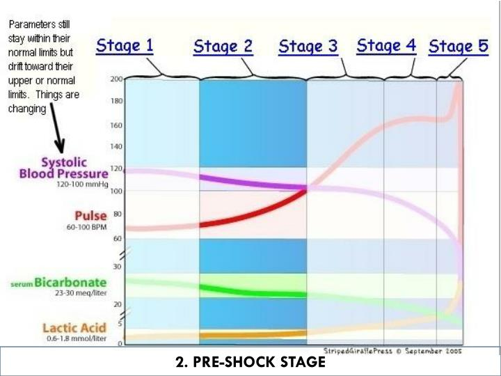 2. PRE-SHOCK STAGE