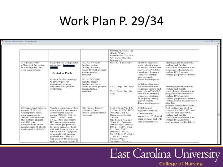 Work Plan P. 29/34