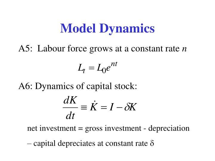 Model Dynamics