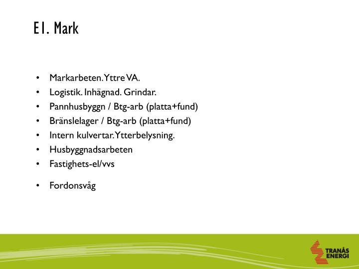 E1. Mark