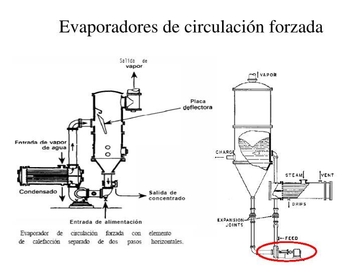 Evaporadores de circulación forzada