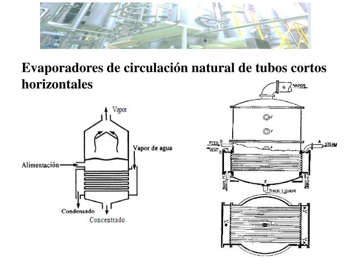 Evaporadores de circulación natural de tubos cortos