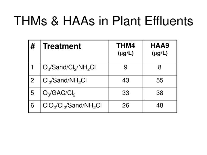 THMs & HAAs in Plant Effluents