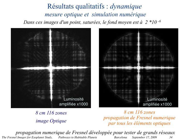Résultats qualitatifs :