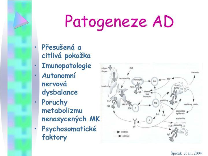 Patogeneze AD