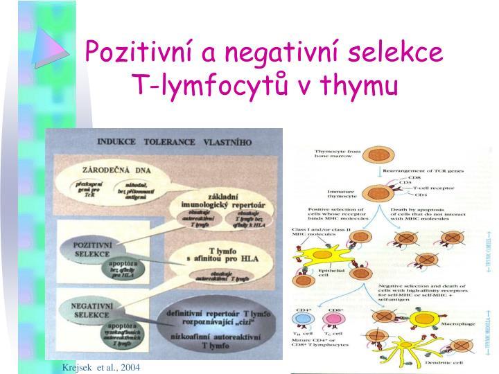 Pozitivní a negativní selekce