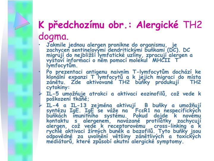 K předchozímu obr.: Alergické