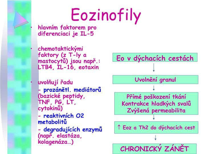 Eozinofily