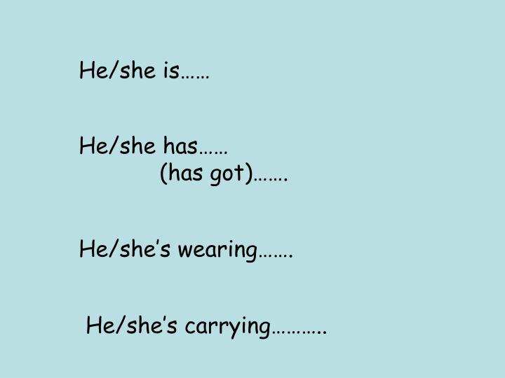 He/she is……