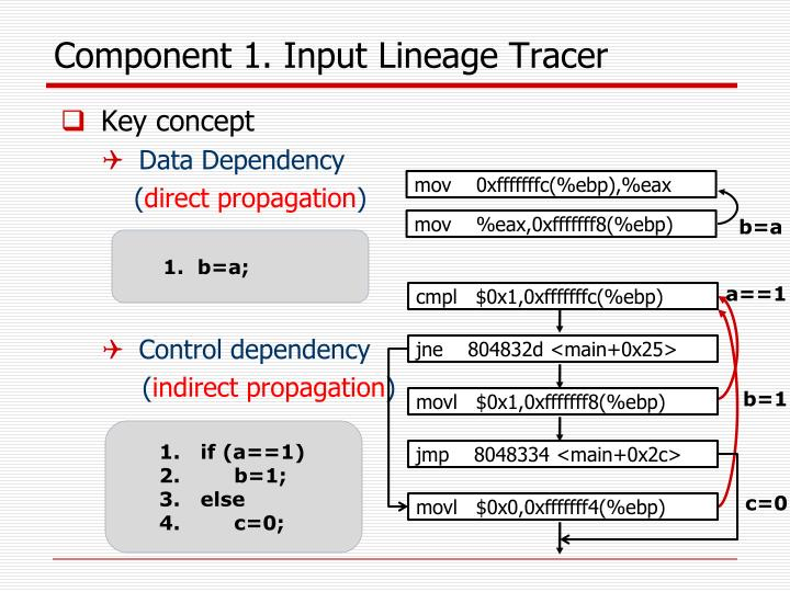 Component 1. Input Lineage Tracer