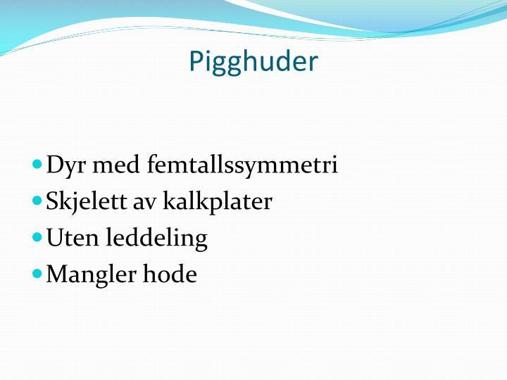 Pigghuder