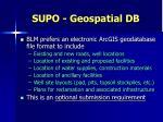 supo geospatial db1