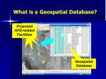 what is a geospatial database