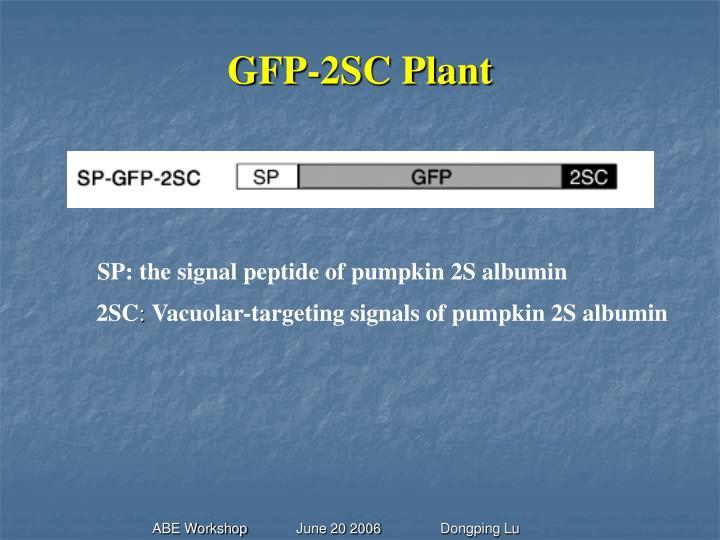 GFP-2SC Plant