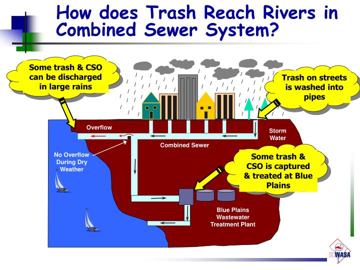 How does Trash Reach Rivers in Combined Sewer System?