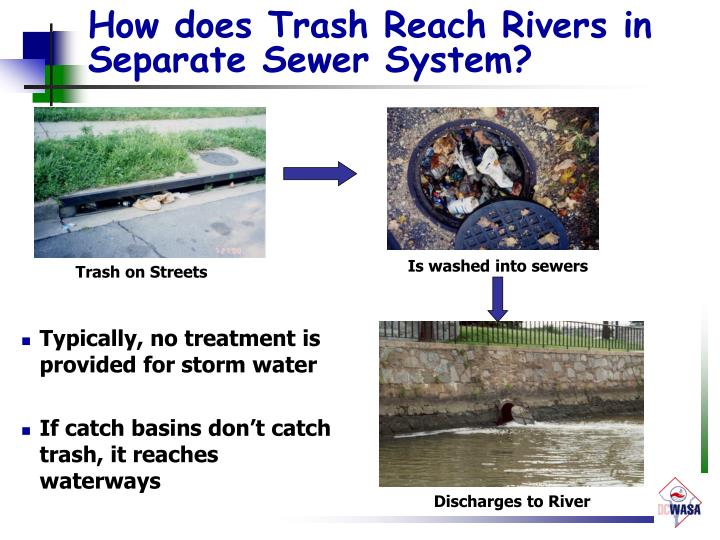 How does Trash Reach Rivers in Separate Sewer System?