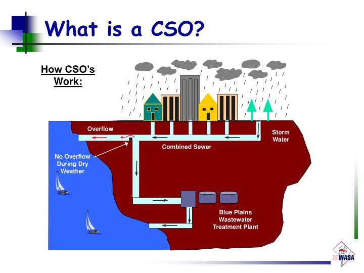 What is a CSO?