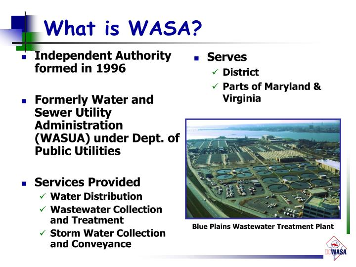 What is wasa