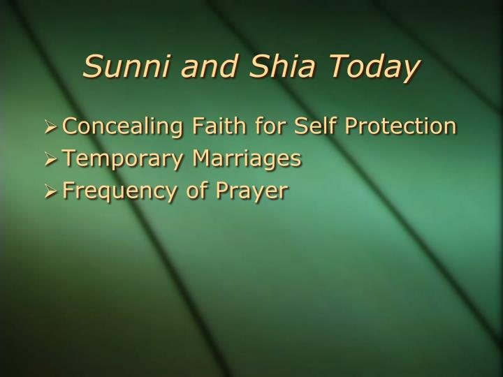 Non Muslim Perspective On The Revolution Of Imam Hussain: Sunni Vs. Shia PowerPoint Presentation