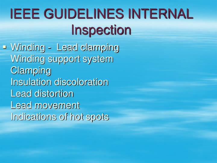 IEEE GUIDELINES INTERNAL Inspection