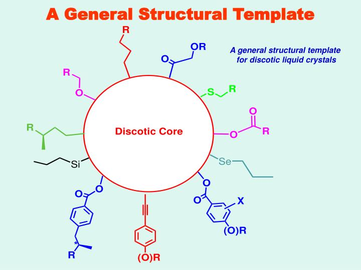 A General Structural Template