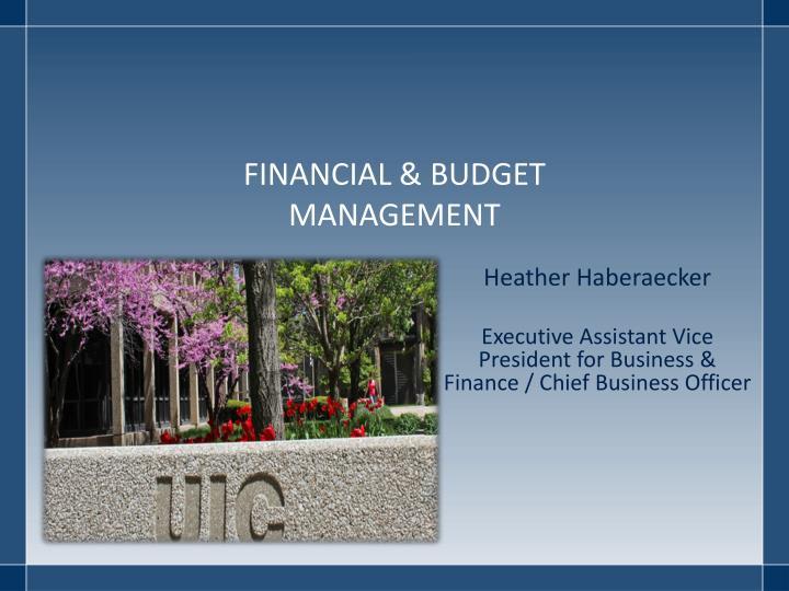 FINANCIAL & BUDGET