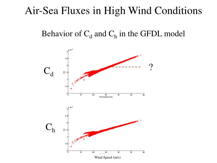 Air-Sea Fluxes in High Wind Conditions