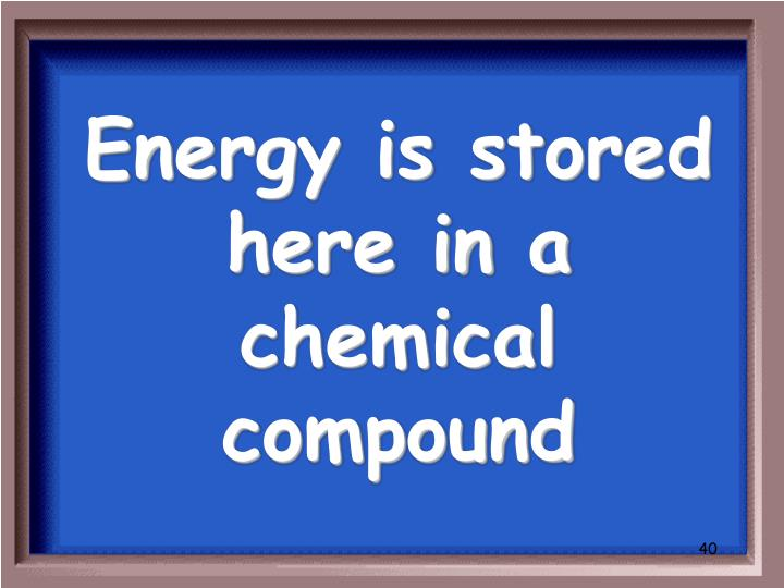 Energy is stored here in a chemical compound