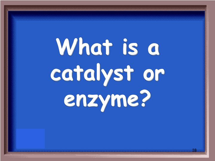 What is a catalyst or enzyme?