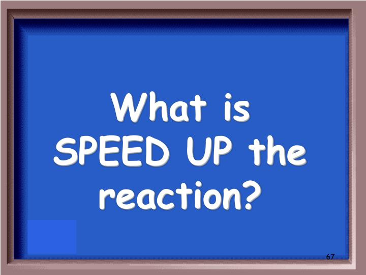 What is SPEED UP the reaction?