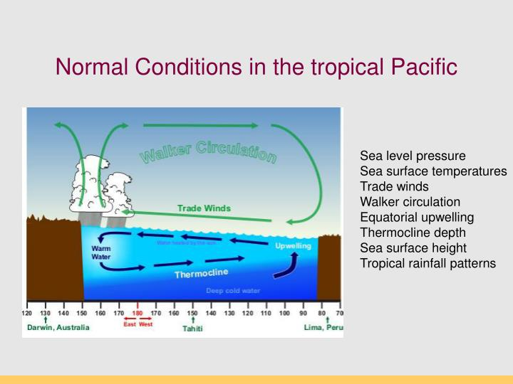 Normal Conditions in the tropical Pacific