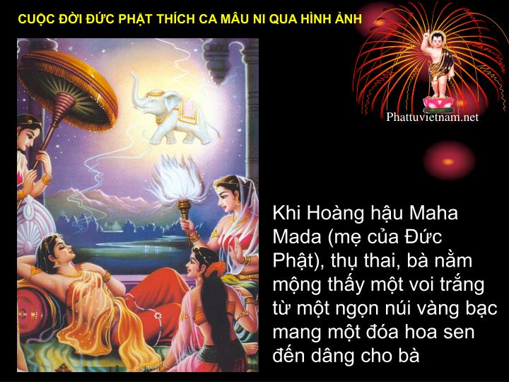 Khi Hong hu Maha Mada (m ca c Pht), th thai, b nm mng thy mt voi...