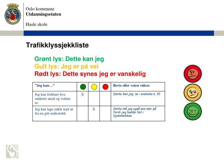 Trafikklyssjekkliste