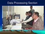 data processing section